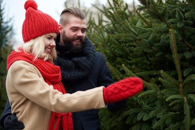 커플은 완벽한 크리스마스 트리를 선택