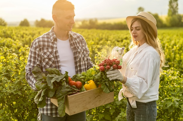 Couple collecting vegetables