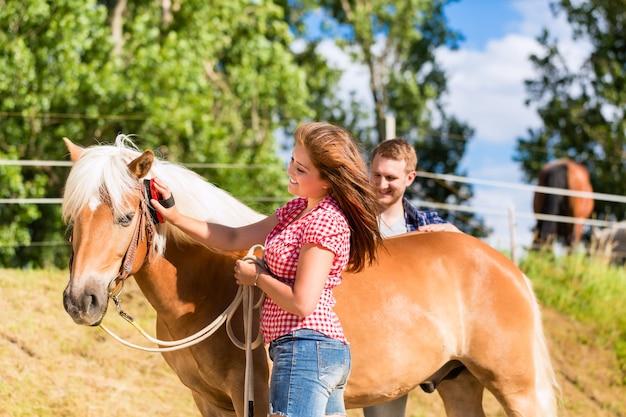 ポニーファームで馬を梳くカップル