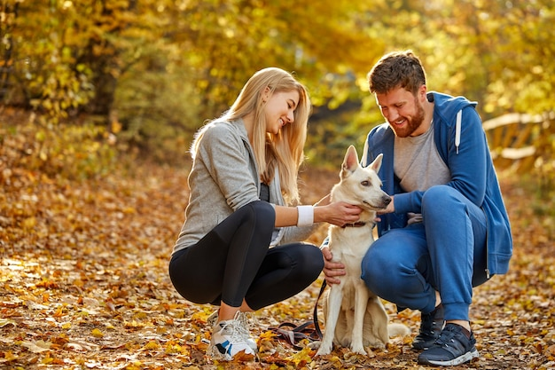 Couple enjoy time with dog in the autumn forest, happy man and woman are friends with nice dog, during fall outdoors