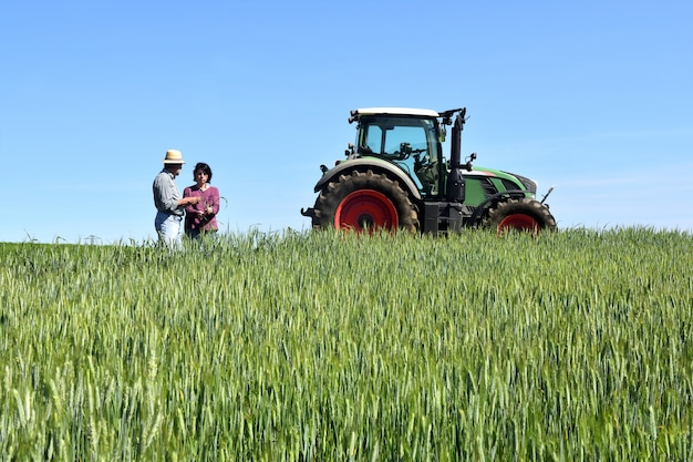 Couple of farmers in a wheat field with a tractor