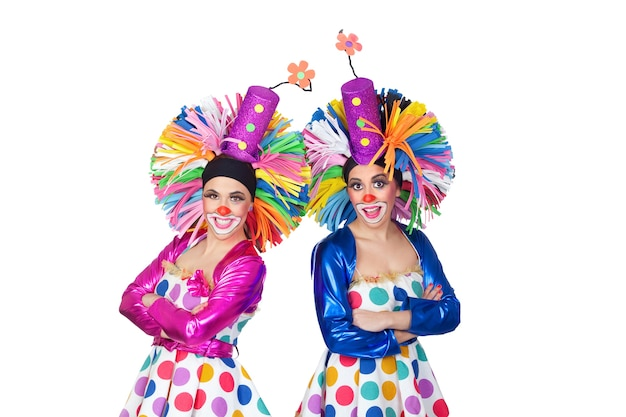 Couple of funny clowns with big colorful wigs isolated on white background