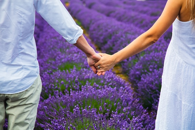 Пара, взявшись за руки в поле лаванды