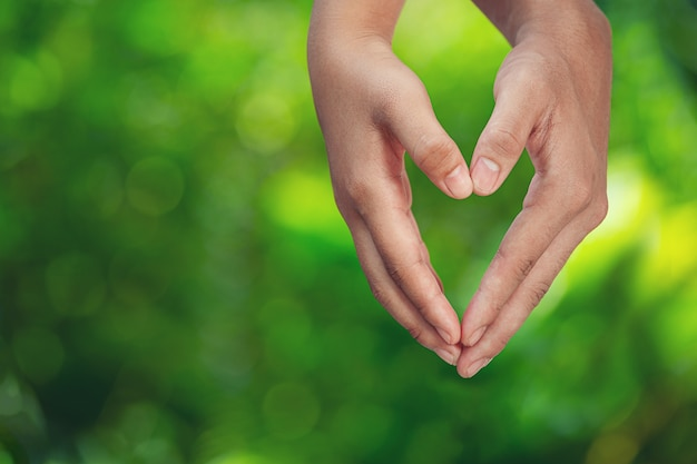 緑の牧草地で手をつないでカップル。