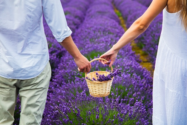 Couple holding hands in a lavender field