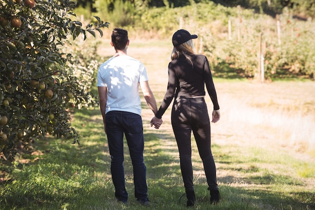 Couple holding hands and looking at apple orchard