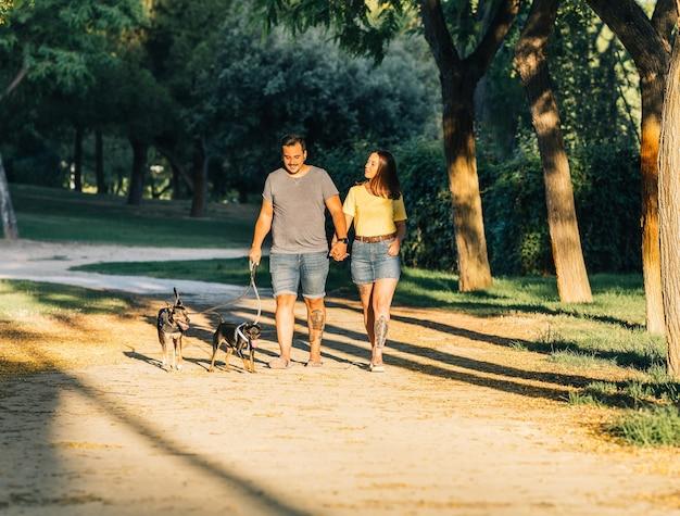 公園で犬の散歩を手をつないでいるカップル。公園で晴れた日に夏服を着て歩くカップル。