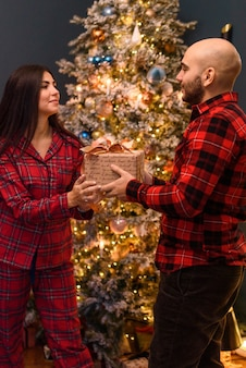 Couple  at home  in christmas decorations