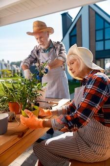エプロンのカップル。四角いシャツと縞模様のエプロンを着て家の外に家の花を植える老夫婦