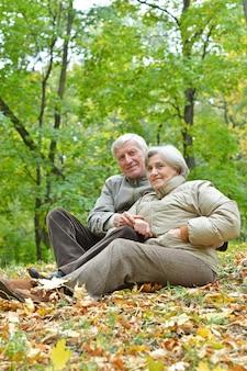 葉の上に座っている秋の公園のカップル