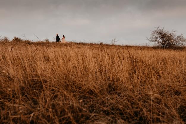 흰 드레스와 양복에 사랑 결혼식 신혼 부부는 여름에 필드에서 긴 잔디에 걷고있다