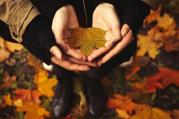 森の中の黄色の葉を保持している開いた手と恋にカップル