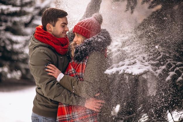 Пара зимой под елкой под падающим снегом