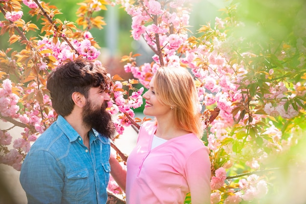Couple in love enjoying sunny day in park during cherry blossom tree