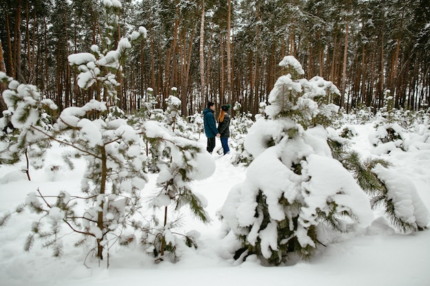 Couple in love walking in the snow-covered pine forest. winter love story.