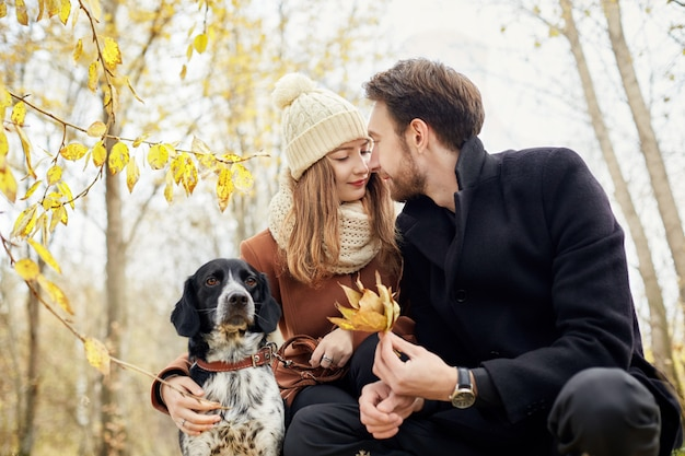Couple in love on a warm autumn day walks in the park with a cheerful dog spaniel.