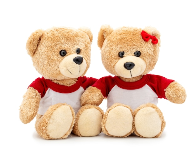 Couple lovely brown teddy bear with t-shirt and red bow isolated on white space