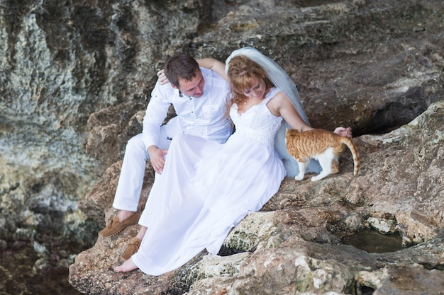Couple newlyweds bride and groom with cat, happy and joyful moment.
