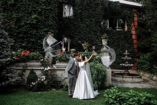 Couple of newlyweds groom and woman bride kissing under umbrellas on the wedding day in the garden of the house with ivy