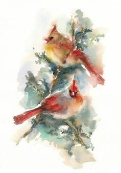 Пара кардиналов, сидя на ветке - акварельные иллюстрации