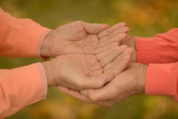 낙엽 위에 함께 손을 몇 개