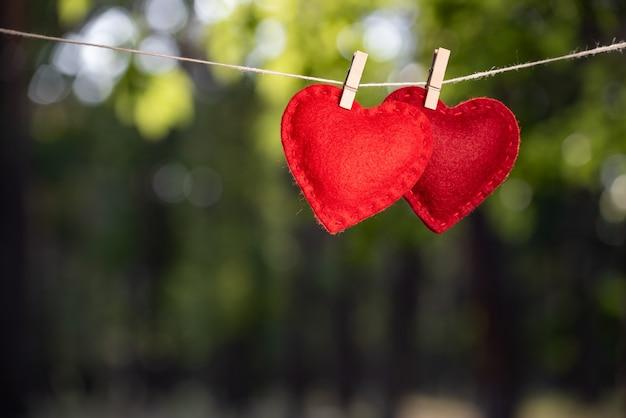 Пара сердец, висящих на веревках для белья на зеленом фоне. концепция любви и валентинки