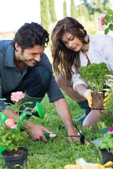 Couple planting plant in garden Premium Photo
