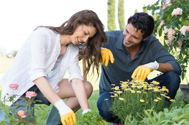 庭で植物を植えるカップル