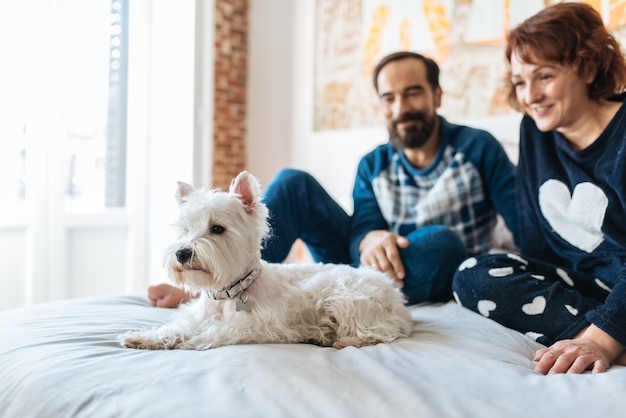 Couple relaxed at home in bed with the dog