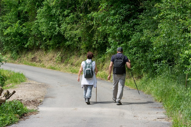 Couple of senior hikers walking on path through the woods.