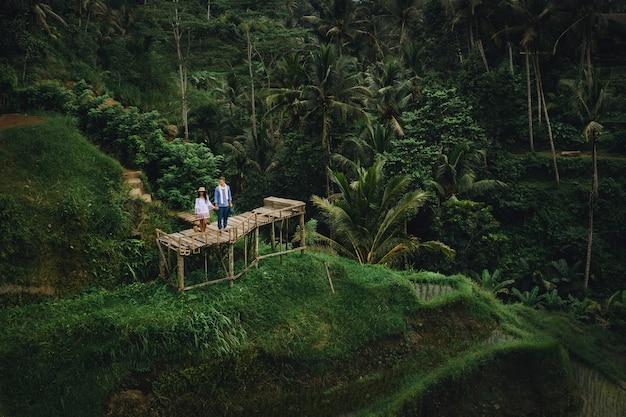 インドネシアのバリ島の棚田近くの木造橋の上に立っているカップル。手をつないで。ロマンチックな気分。熱帯の休暇。空中ショット。背景のココヤシの木。