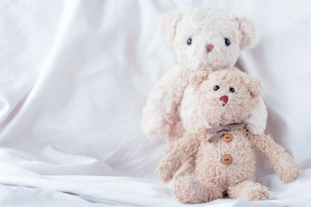 Couple teddy bear embracing with in love on valentines day