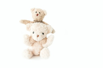 Couple teddy bear in love, Sweet couple doll in valentines day