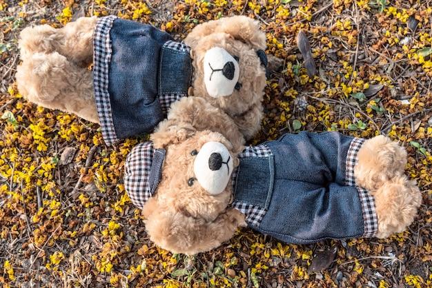 Couple teddy bears rest on ground