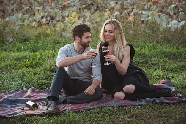 Couple toasting a glass of red wine in field