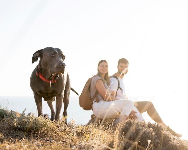 犬と一緒に旅行するカップル