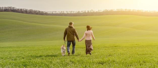 Пара гуляет с собакой на весеннем поле