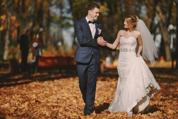 Пара ходить рука об руку через парк