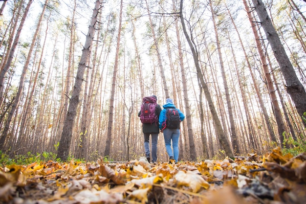가을 자연 배경 위에 배낭을 메고 걷는 커플, 뒷모습