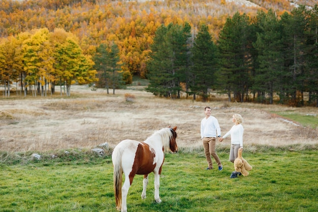 Couple walks on the lawn in the autumn forest holding hands and horse is grazing on the lawn