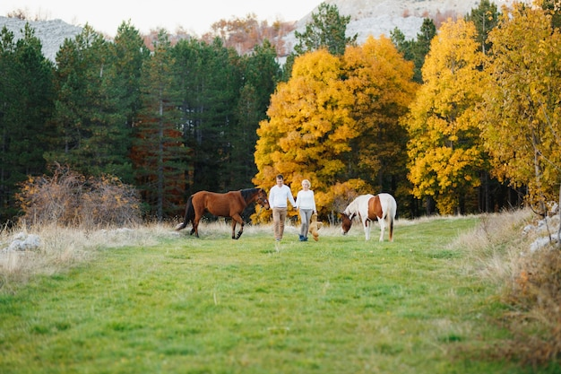 Couple walks on the lawn in the autumn forest, horses graze on the lawn a woman holding
