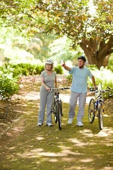 自転車と木の恋人