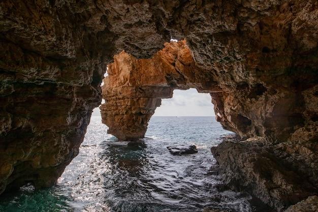 Cova delsarcs地中海の費用
