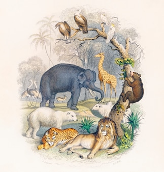 Cover of a history of the earth and animated nature (1820) by oliver goldsmith