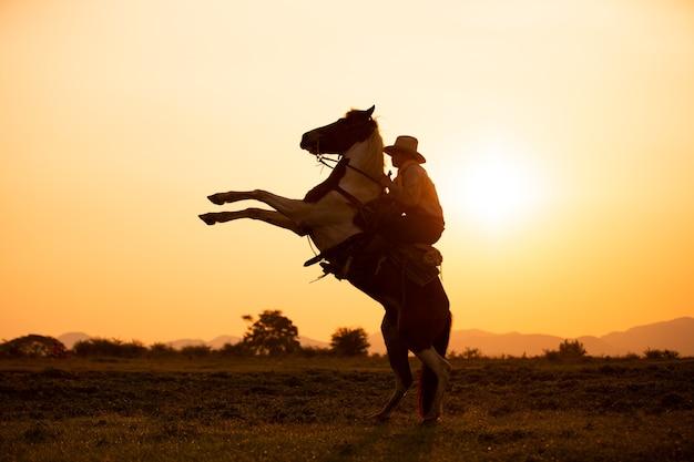 Ковбой на коне на фоне красивого заката