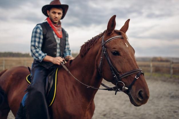 砂漠の谷で馬に乗るカウボーイ