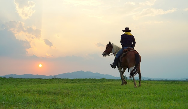 Cowboy riding horse against sunset in the field