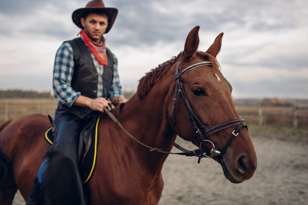 Cowboy riding a horse in desert valley Premium Photo