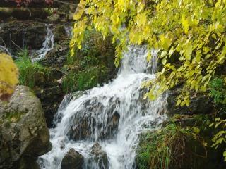 Cox hollow falls
