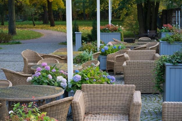 秋の公園の居心地の良いカフェテラス自然のパティオガーデンレストランの快適な籐の家具
